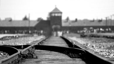 Photo of History of Auschwitz Birkenau